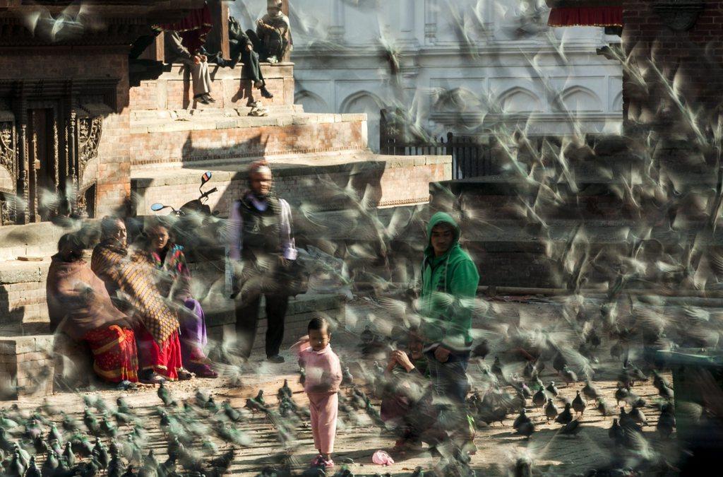 Lange Belichtungszeit: Taubenschwarm in Kathmandu Nepal EPA/NARENDRA SHRESTHA
