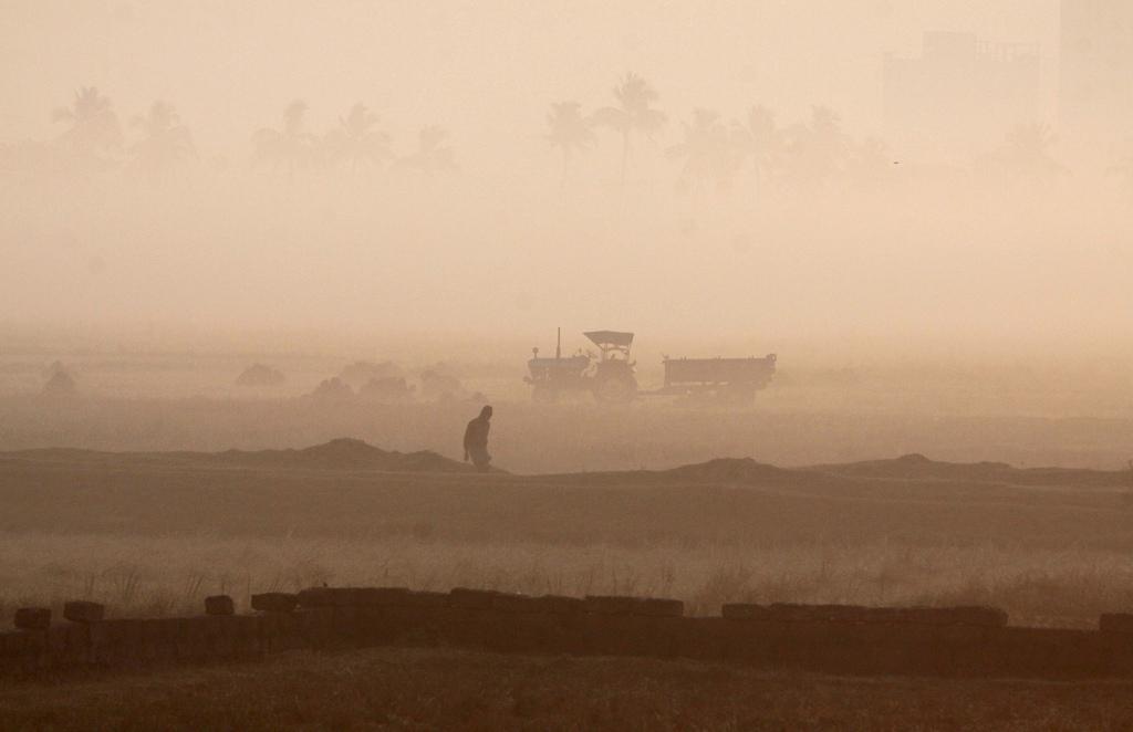 Bäuerliche Arbeit an einem nebligen Morgen, Bhubaneswar Indien, (AP Photo/Biswaranjan Rout)