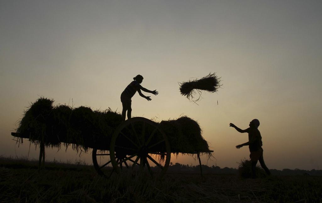 Bauern in Bhubaneswar, Indien (Keystone/AP Photo/Biswaranjan Rout)