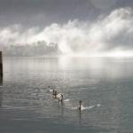 Leserfoto: Traumhafte Seenlandschaft