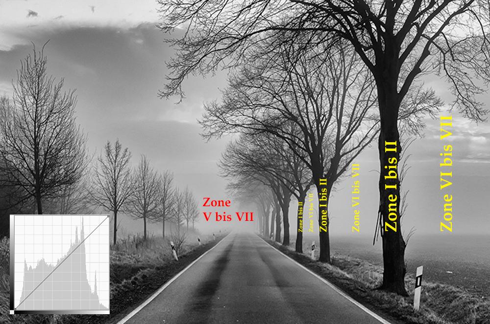 Tonwerte: Histogramm und Zonenverteilung