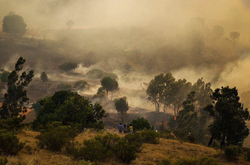 Brennende Landschaft, Chile, 600km südlich von Santiago EPA/CAMILO TAPIA