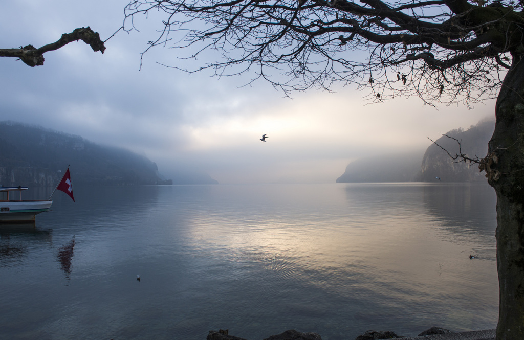 Morgenstimmung am Vierwaldstättersee, Brunnen CH (KEYSTONE/Sigi Tischler)