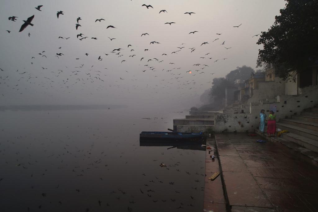 Vögel und winterliche Lichtstimmung am heiligen Fluss Yamuna, Neu Delhi, Indien  (AP Photo/Saurabh Das)