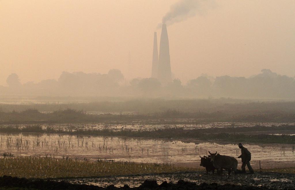 Landwirtschaft in Mayong, Indien (Keystone/AP Photo/Anupam Nath)