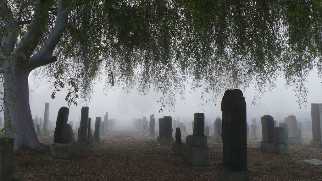 Nebel in Los Angeles, USA (Keystone/AP Photo/Nick Ut)