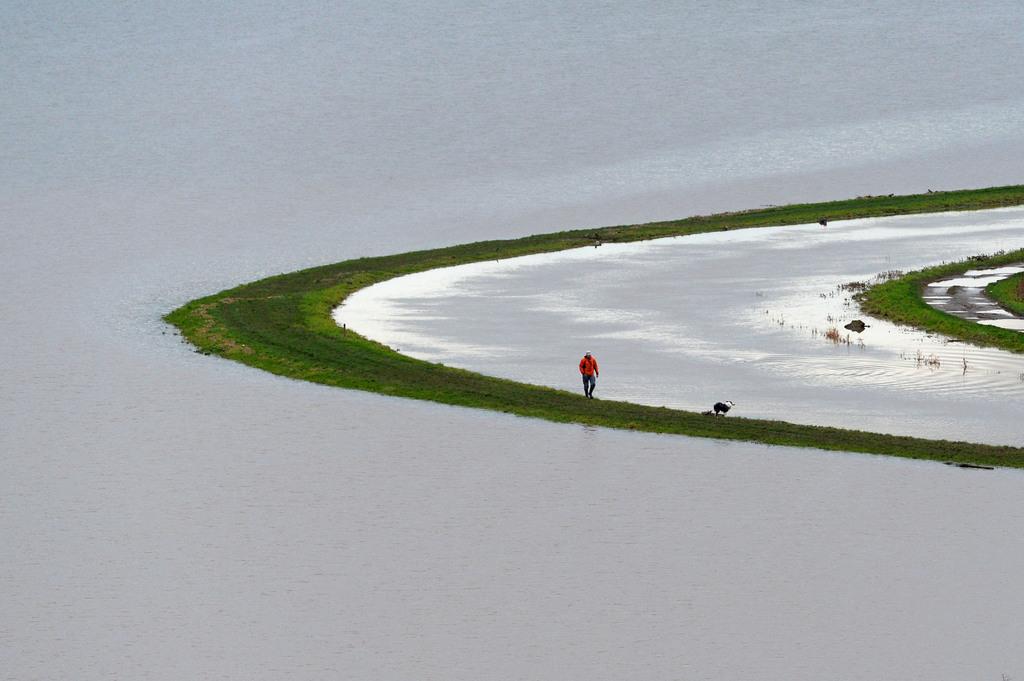 An den Ufern des Tone bein Burrowbridge, England (Keystone/AP Photo/Tim Ireland)