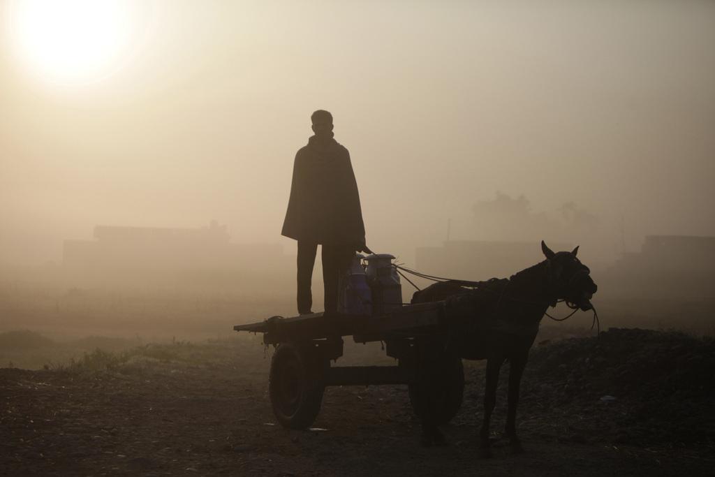 Milchtransport am nebligen Morgen, Jammu Indien (AP Photo/Channi Anand)