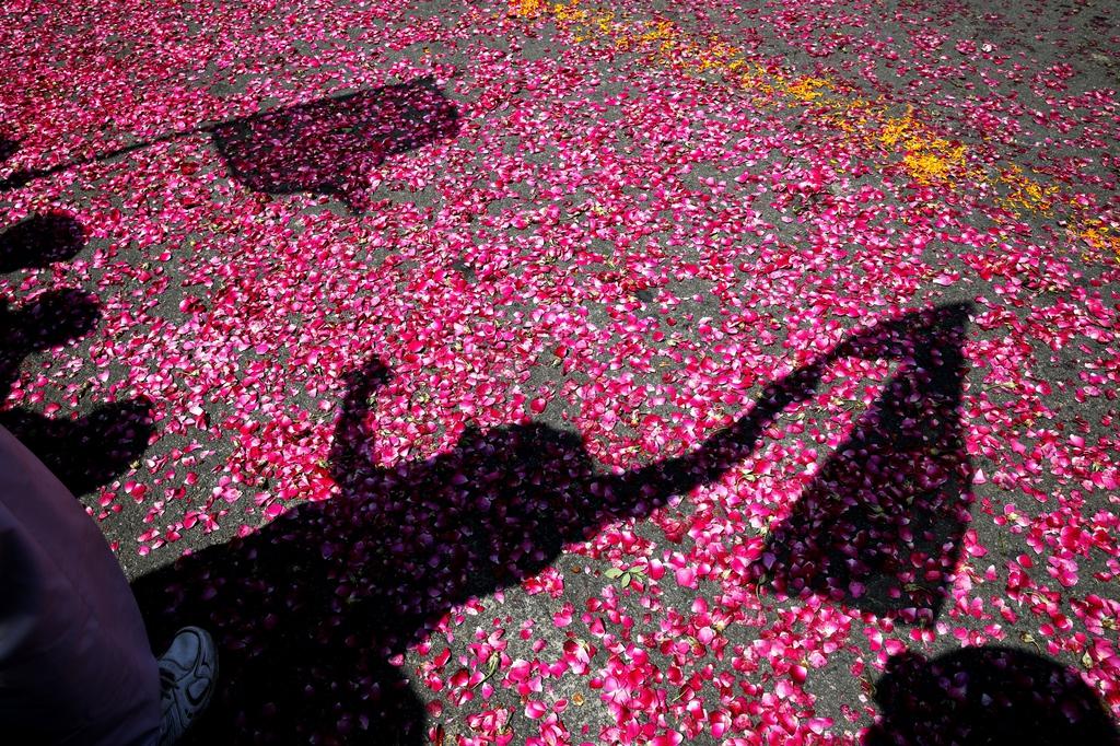 Wahlkampf in Rae Bareli, Indien (Keystone/AP Photo/Rajesh Kumar Singh)