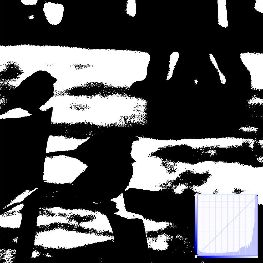 Tonwerte: Histogramm und Lichterbeschnitt