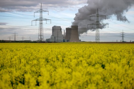 Rapeseed field in front of lignite power plant