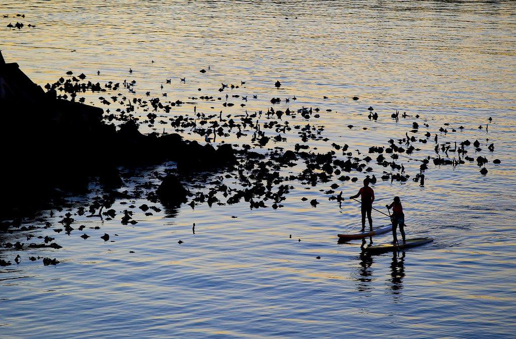 Sonnenuntergang bei Cape Town, Südafrika (Keystone/EPA/Nic Bothma)