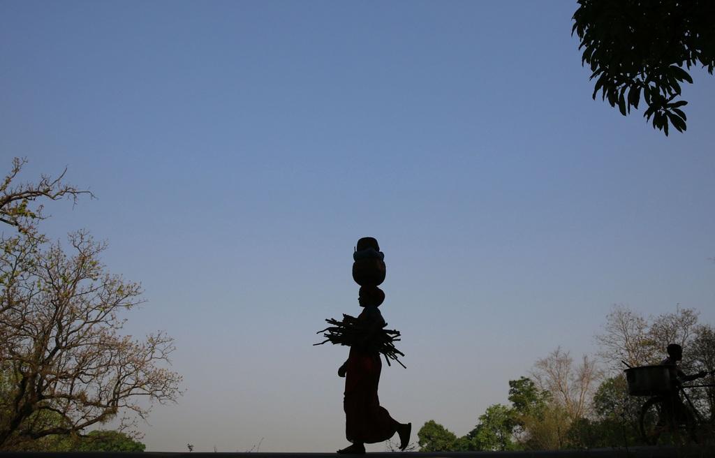 Frau mit Holz und Früchten auf dem Heimweg nahe Raigarh, Indien  (AP Photo/Rafiq Maqbool)