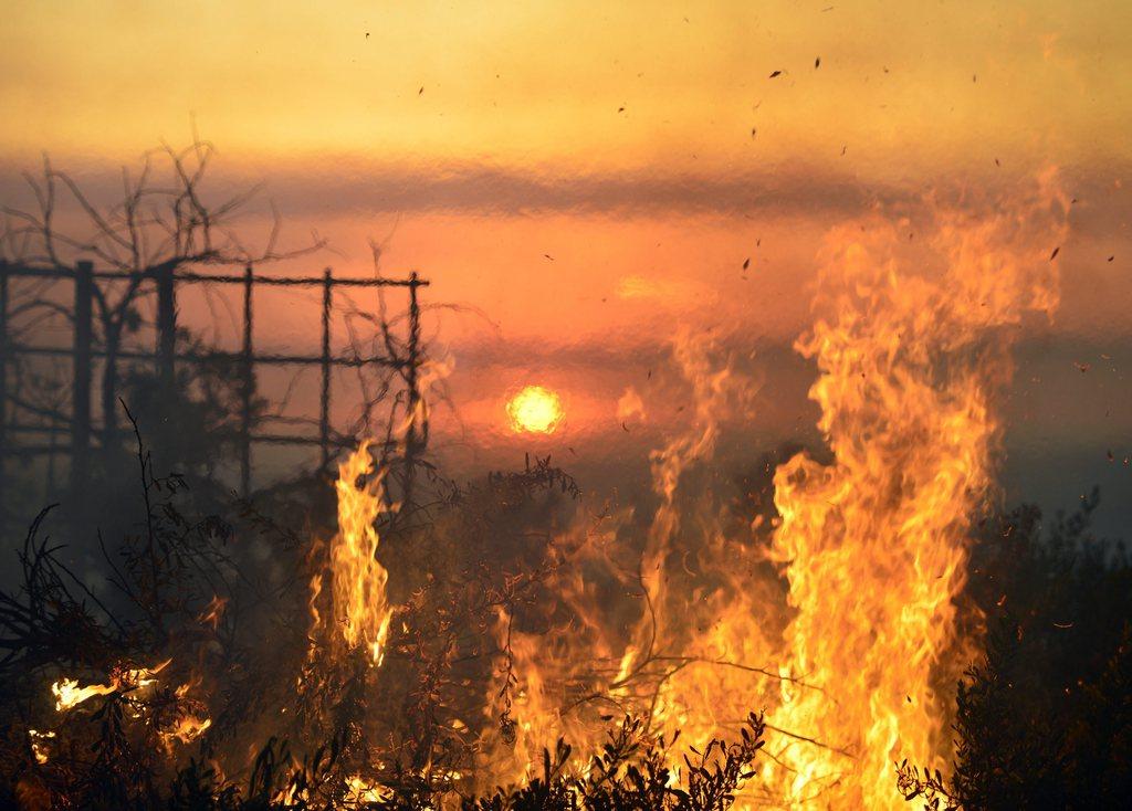 Waldbrand in San Diego, USA (Keystone/EPA/Stuart Palley)