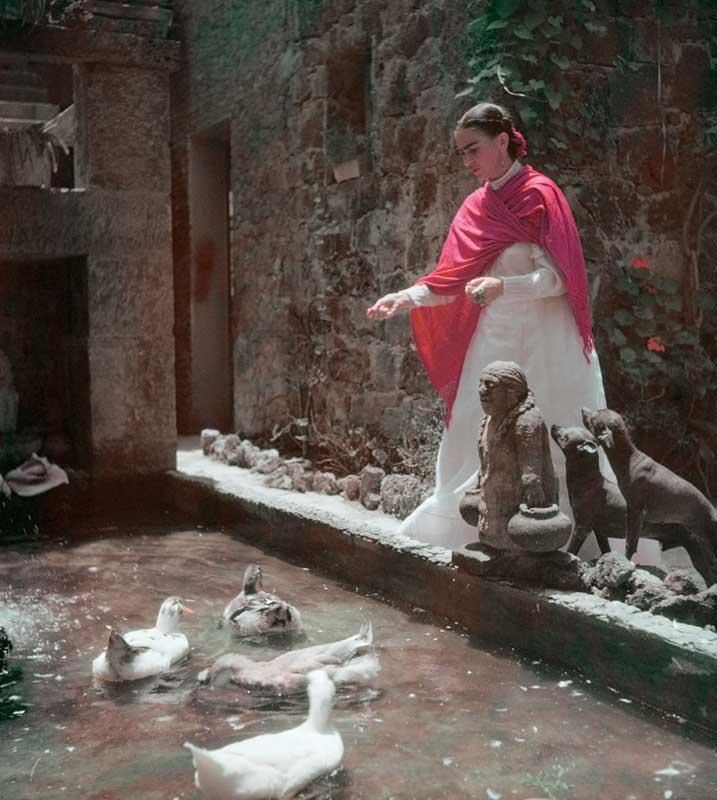 Gisèle Freund: Frida Kahlo im Garten, Coyoacan, Mexico City, ca. 1948 © IMEC, Fonds MCC, Vertrieb bpk / Photo Gisèle Freund