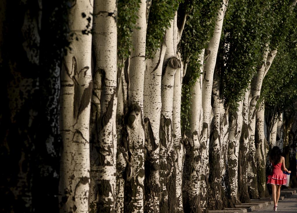 Spaziergang in Donetsk, Ukraine (Keystone/AP Photo/Vadim Ghirda)