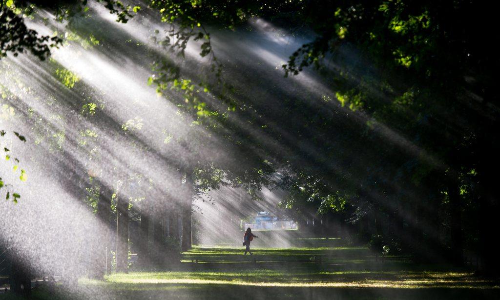 Morgensonne in Berlin, Deutschland (Keystone/EPA/Maja Hitij)