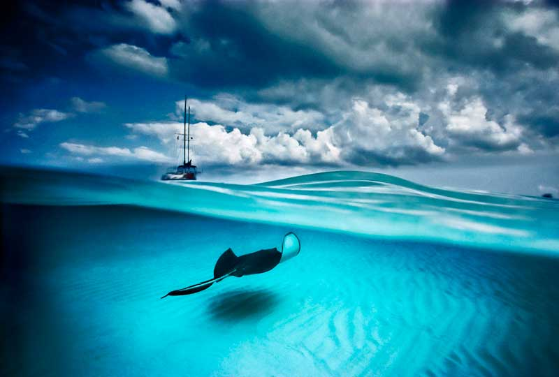 Stingray and Sailboat by David Doubilet © David Doubilet / Undersea Images, Inc