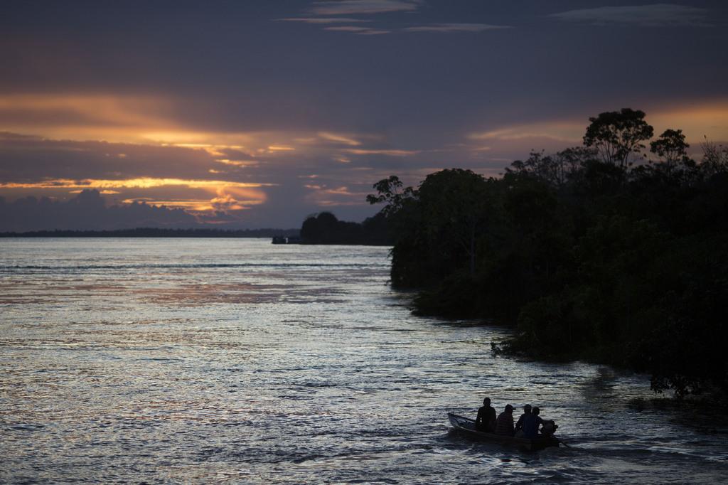 Boot nahe Manaus am Amazonas, Brasilien (AP Photo/Felipe Dana)