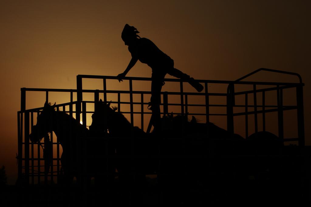Vorbereitung zum Pferderennen in Jenin, West Bank (Keystone/AP Photo/Mohammed Ballas)