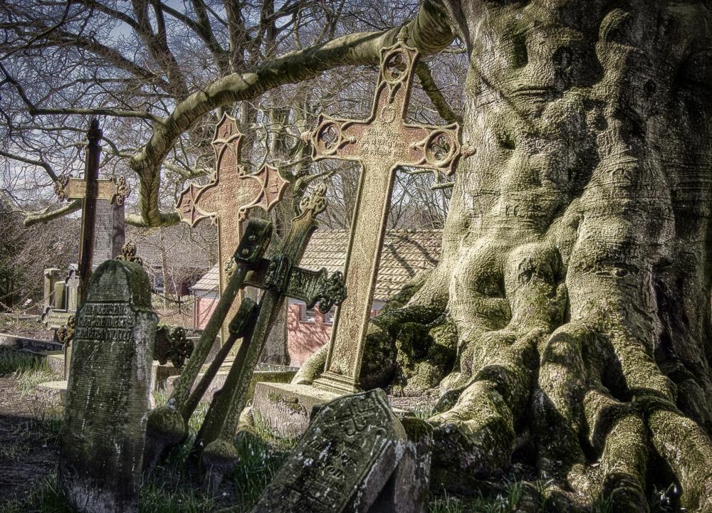 Leserfoto - «Ain\'t No Grave»: Inspiration und Ausführung