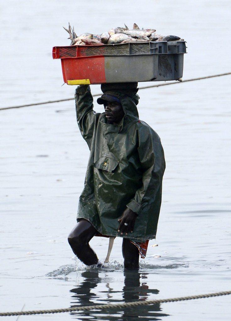 Arbeiter in der Fischindustrie im Senegal, EPA/HELMUT FOHRINGER