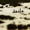 Hochwasser am Baitarani in der Nähe von Akhuapada, Indien (Keystone/AP Photo/Biswaranjan Rout)