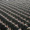 Militärparade im Zusammenhang mit der Jugendolympiade in Nanjing, China (Keystone/AP Photo)