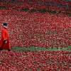 Zum Gedenken an den Ersten Weltkrieg in London, Großbritannien (Keystone/EPA/Andy Rain)