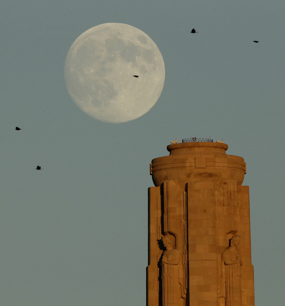 Mond und Vögel , Kansas City, USA  (AP Photo/Charlie Riedel)