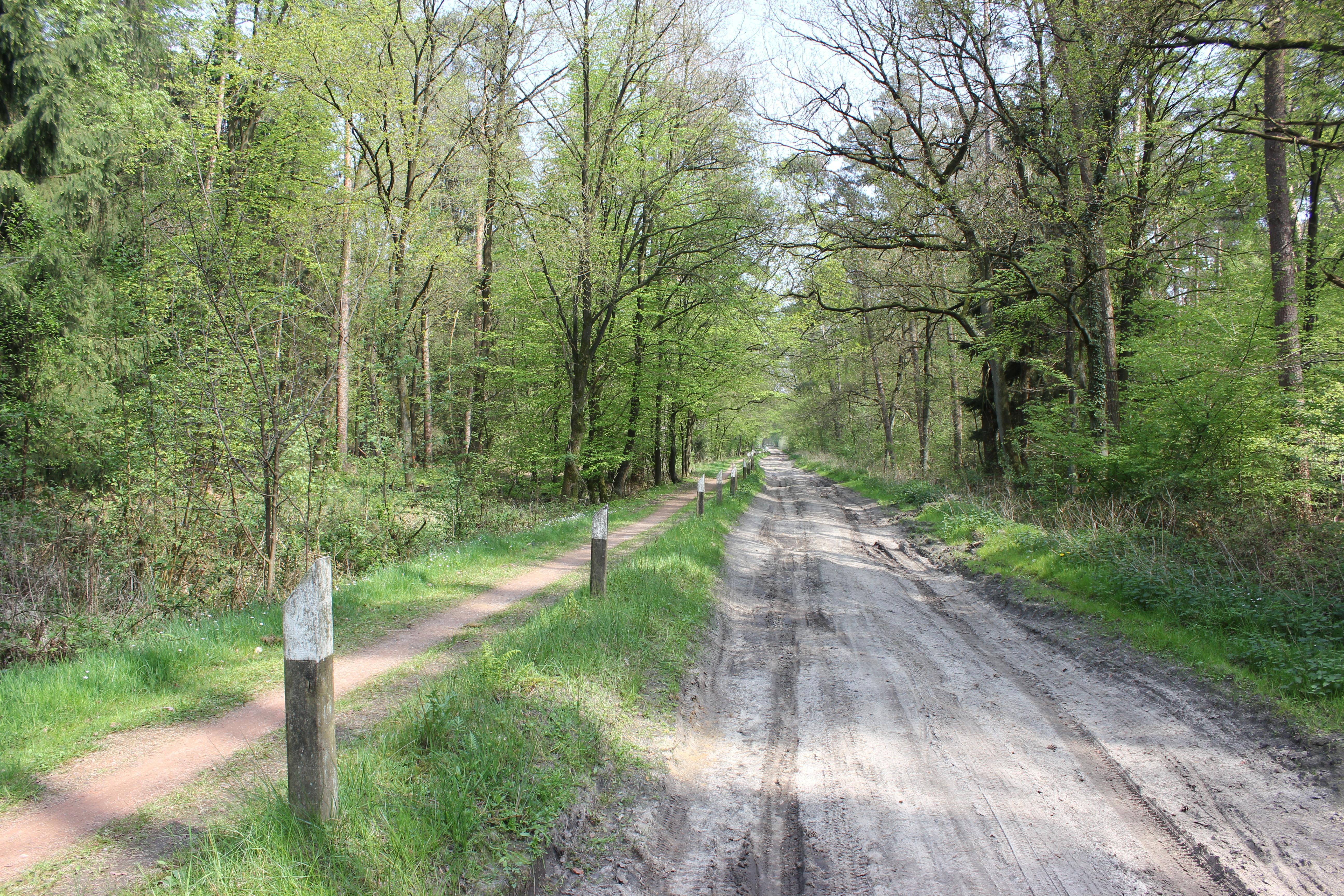 Leserfoto - Fahrradtour durch das Samerott: Nachbearbeitung schafft kein Motiv