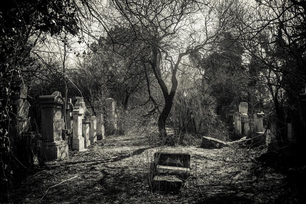 St. Marxer Friedhof im Frühling: Nachbearbeitung ist eine individuelle Entscheidung