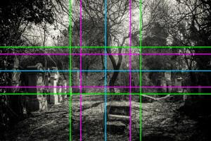 Vergleichsfoto/Komposition