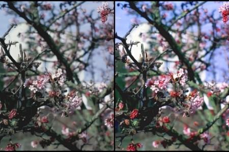 Vergleich eines Bildes vor und nach EBV - (c) Marcel Dierke