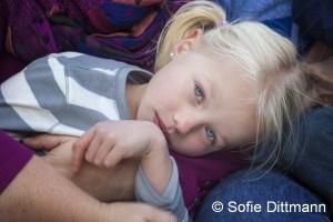 Vergleichsfoto - (c) Sofie Dittmann