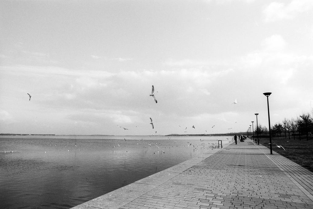 © Christel Lücke – Stadthafen Bitterfeld