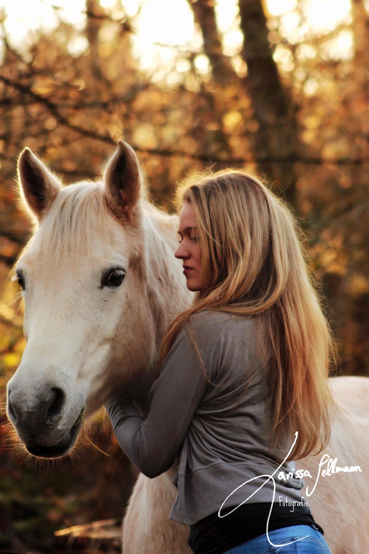 Pferd und Reiterin im abendlichen Gegenlicht