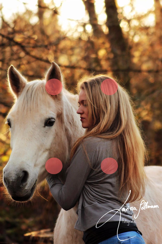 Pferd und Reiterin im Abendlicht, Bildschwerpunkte