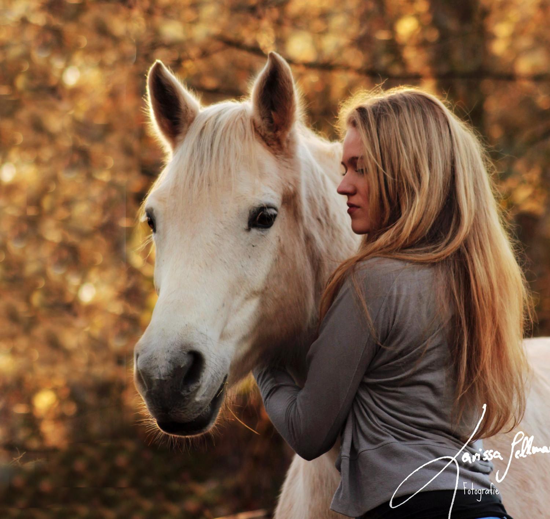 Pferd und Reiterin am Abend im Quadratschnitt
