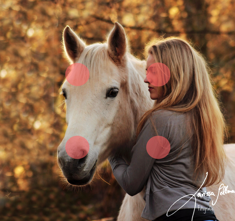 Pferd und Reiterin am Abend