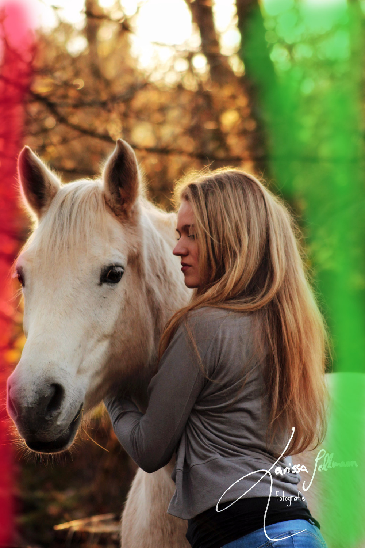 Pferd und Reiterin im Abendlicht,