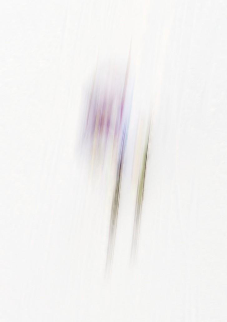Die Geisterfahrer der anderen Art vom Lauberhorn (Lauberhornabfahrt vor der Unterführung). Adrien Theaux /Frankreich