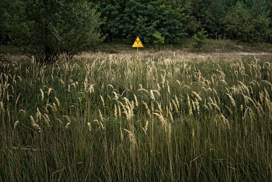 Radioaktiv verseuchtes Feld beim ehemaligen Reaktorgelände von Tschernobyl © Niels Ackermann / Swiss Press Photo
