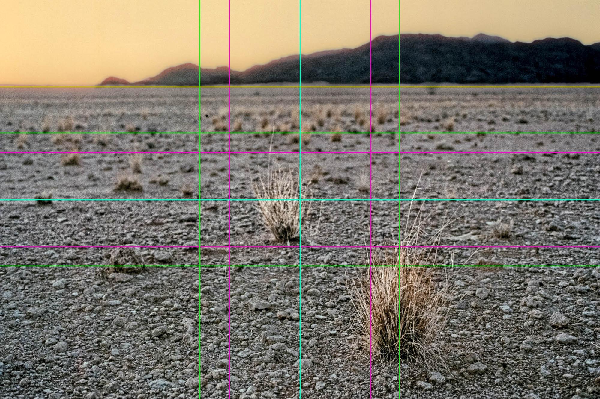 Vergleichsfoto - Komposition