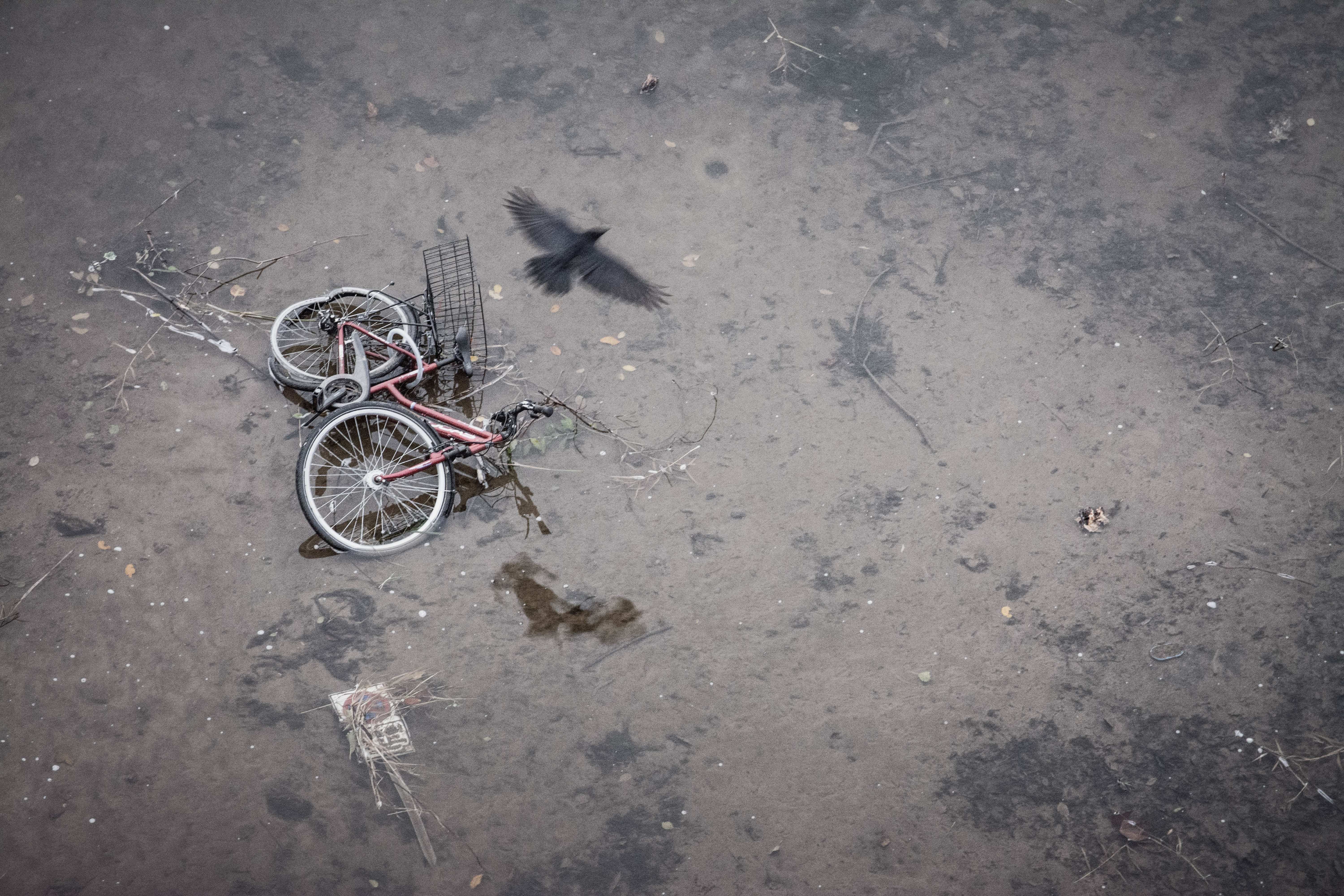 Requiem for a bicycle - (c) Michael Gündling