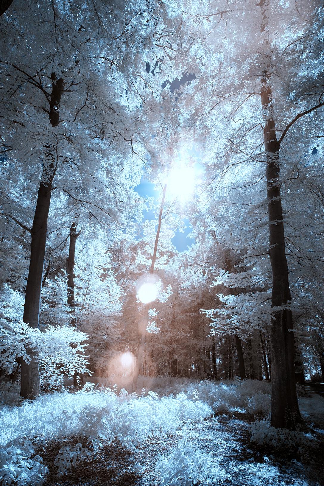 Surrealer Effekt mit Lensflares
