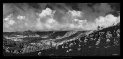 La Palma, stitch of 5 images
