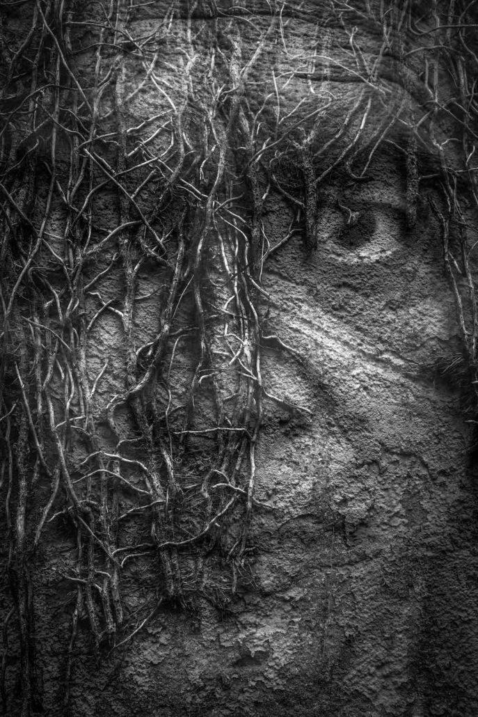 """Das Umschlagsbild von Marcus Leusch auf dem fokussiert/Pixum-Fotobuch """"Doppelt Gesehen"""""""