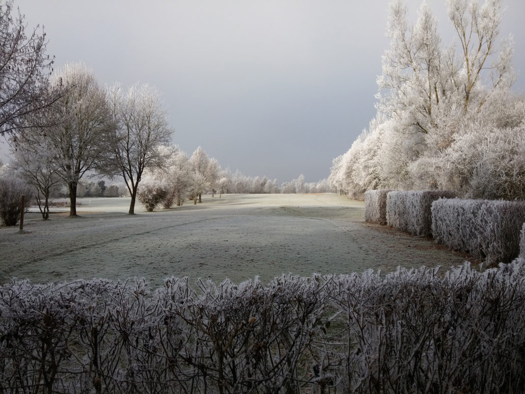 Rauhreif-Fotografie Golfplatz