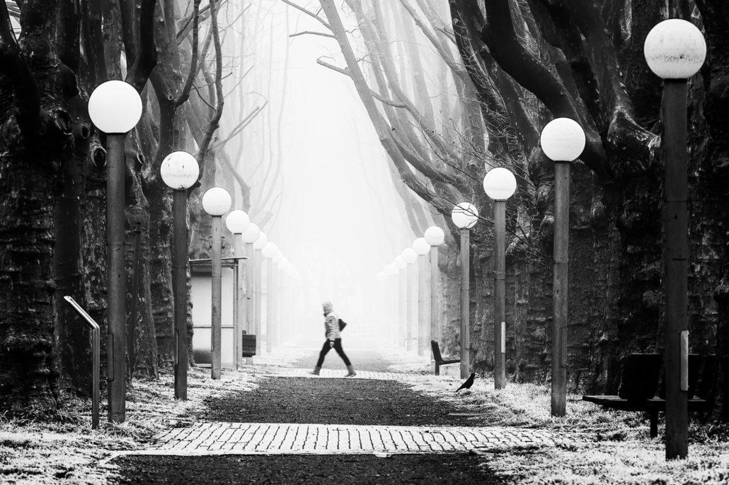 Stativ-Streetfoto: Fog A Walk